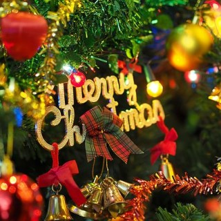 the-christmas-tree-1081323_640_mini