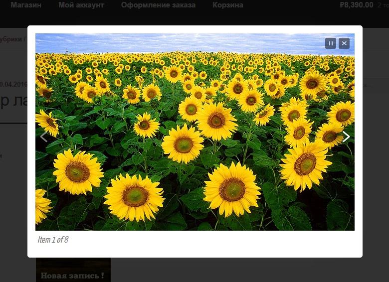 лайтбокс окно на сайт