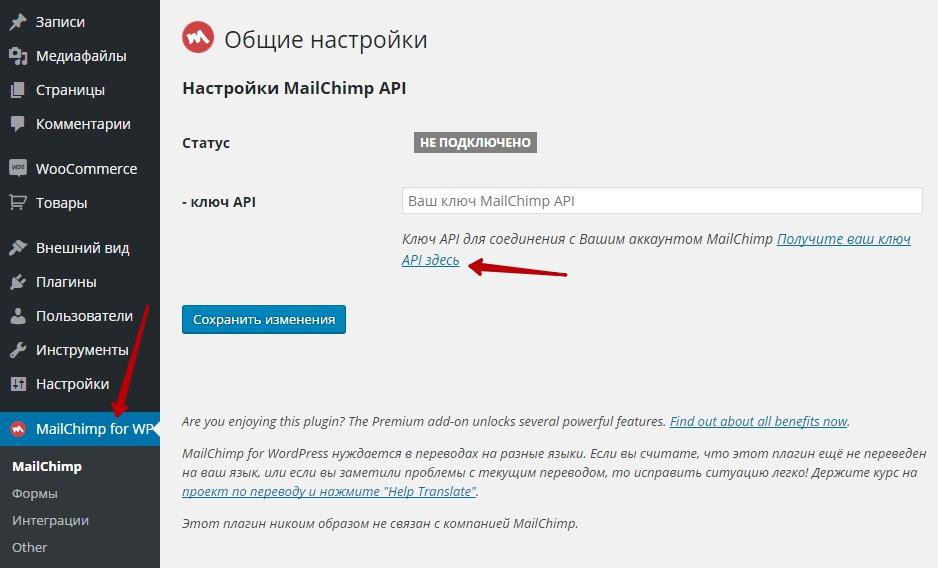MailChimp на сайт