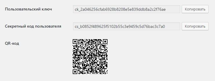 API ключ код