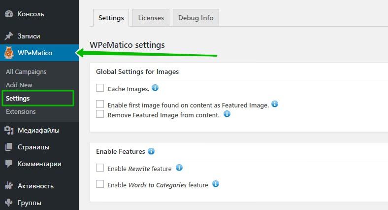 WPeMatico settings