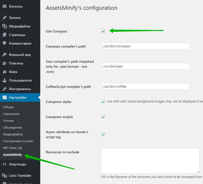 AssetsMinify's configuration