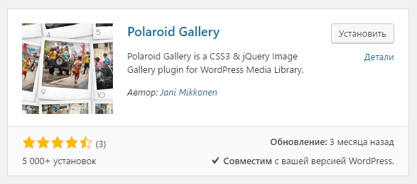 Polaroid Gallery