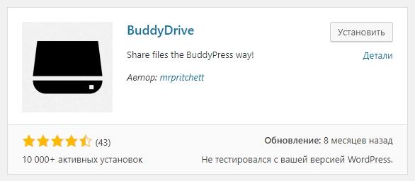 BuddyDrive