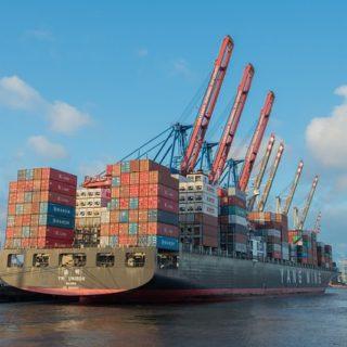 импорт и экспорт форума