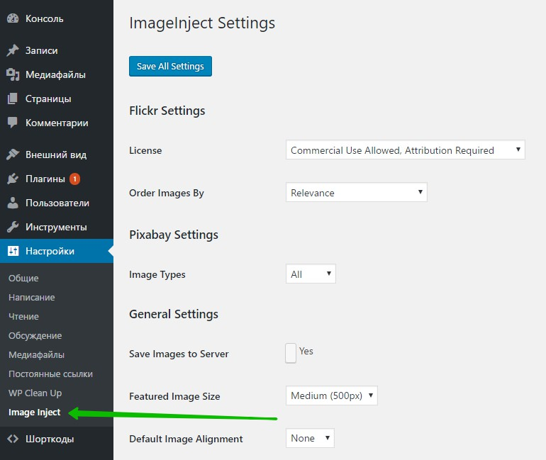 ImageInject Settings WordPress сайт