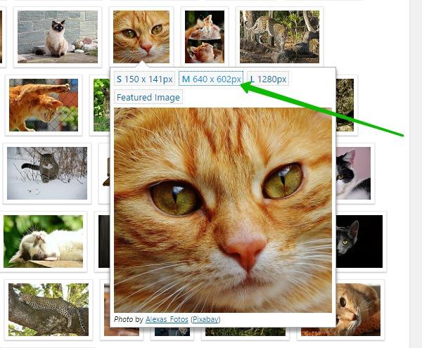 Find Free Images фото на сайт Супер плагин WordPress