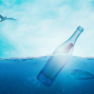 бутылка сообщение письмо море вода чайка рыба