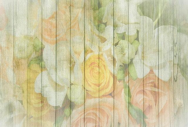 принт стена цветы обои