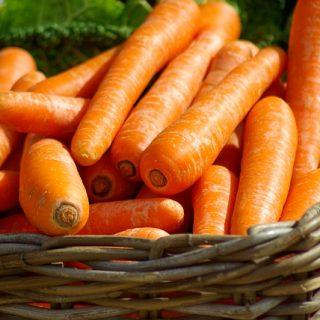 морковка овощи