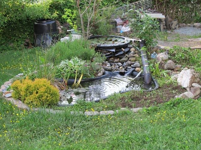 пруд дача дом вода