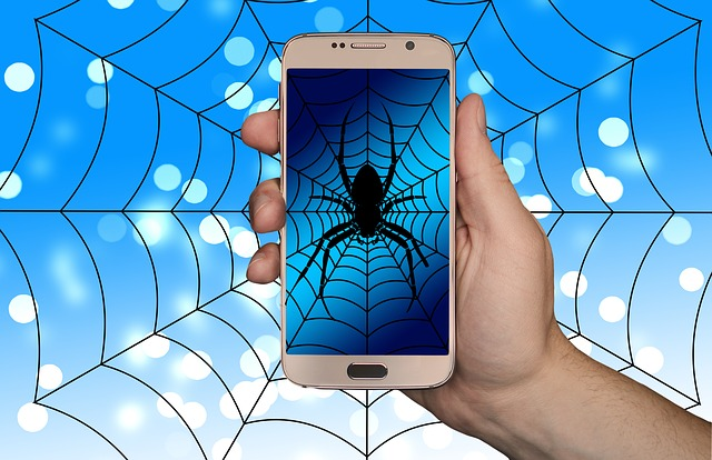 смартфон сеть паук