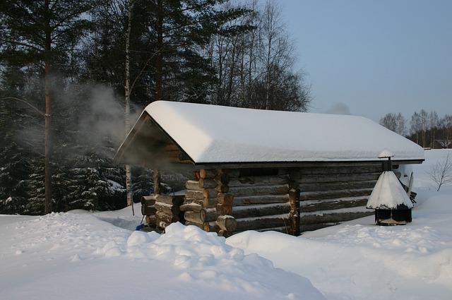 русская баня из бруса