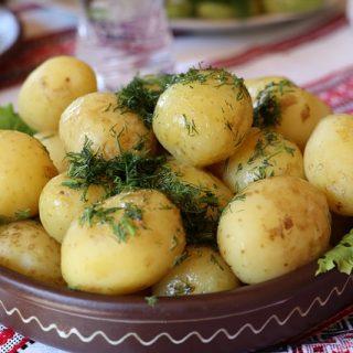 картошка варёная укроп