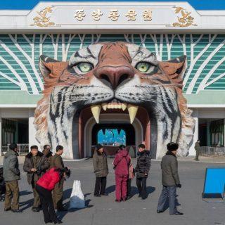 Центральный зоопарк Пхеньяна