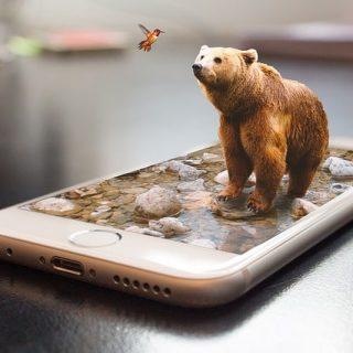 смартфон анимация медведь птичка