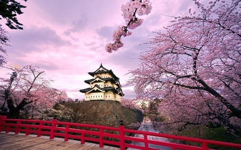 весна в Японии фото